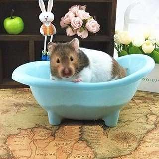Plastic Bathtub (Used For Sandbath / Photoshoot Prop)