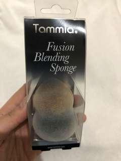 Blanding Sponge