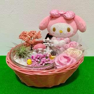 My Melody Airplant Basket Bouquet Terrarium