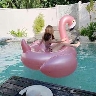 Flamingo float Rose gold