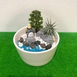Totoro in the forest Airplant Terrarium Mini pot