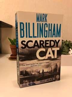 Scaredy Cat English novel