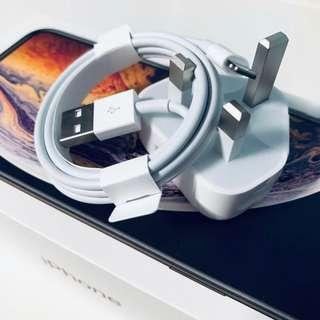 Apple iPhone Lightning Cable and Plug