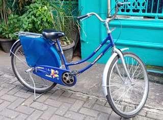 Bicycle/ sepeda dewasa