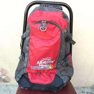 Travel backpack (red/grey)