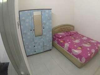 Homestay / Rentals