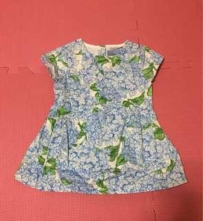 Blue Dress Gingersnaps