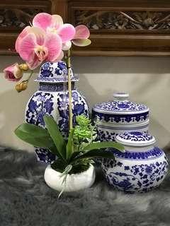 Mini Orkid