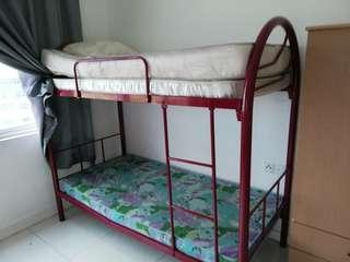 Double decker - steel bed frame