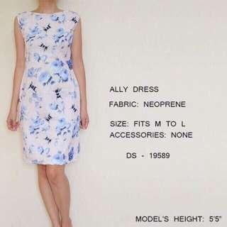 Ally casual dress 2