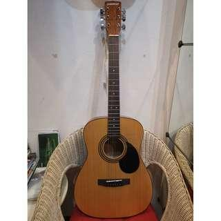 Brand new Congress Concert Acoustic Guitar with gig bag