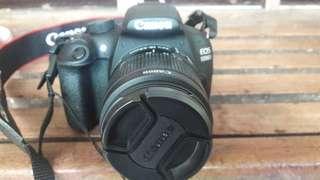 Camera Mulus