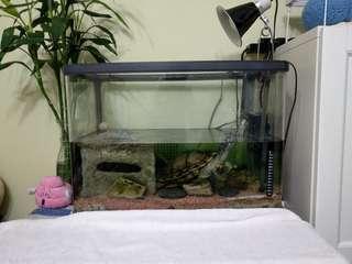二手玻璃魚缸