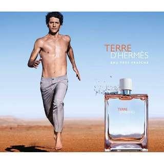 Hermes Terre eau tre friche