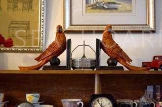🚚 ✨鸚鵡造型書架✨