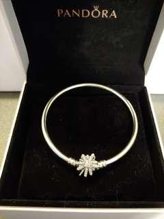 New Pandora Bracelet(Limited Edition)