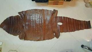 鳄鱼皮(740 mm 寬 x 1950 mm 長)
