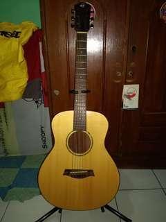 gitar akustik caraya junior
