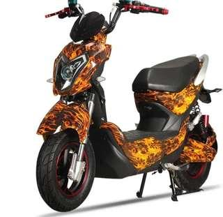 Ebike Panther