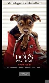 🚚 A Dog's Way Home movie tickets @ GV