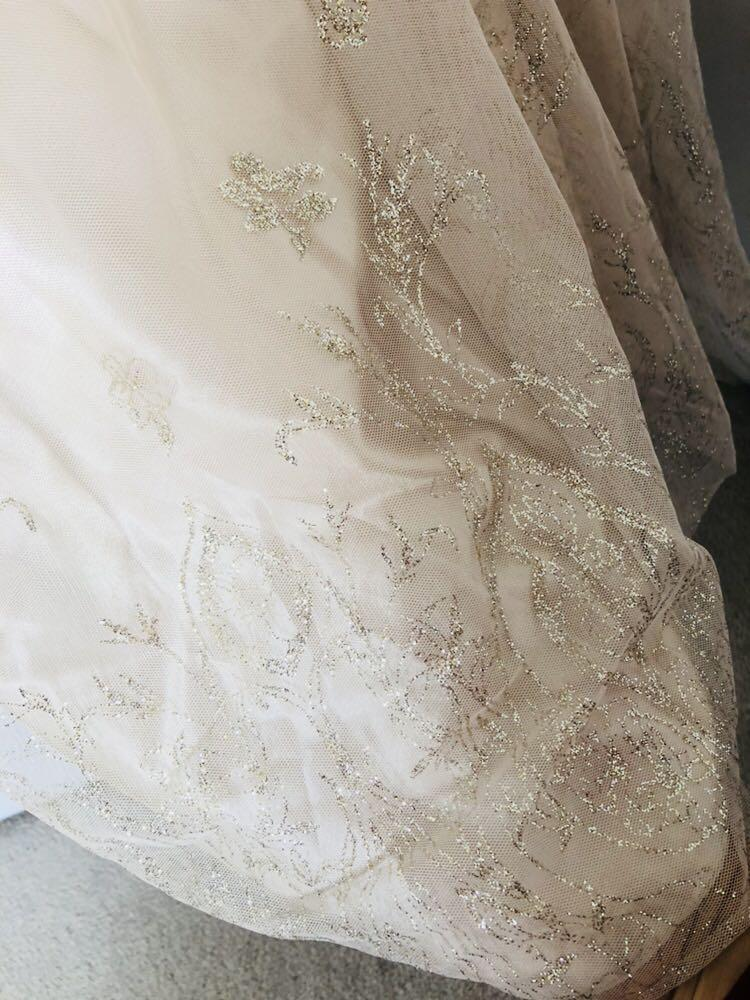 Beautiful Champagne Cinderella Dress