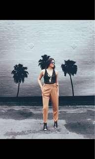 Aritzia Tan Trousers