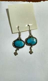 🚚 Jewel stone earring