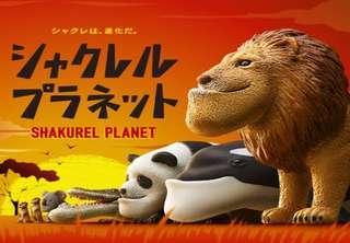 🚚 戽斗星球 戽斗動物園 無尾熊 扭蛋