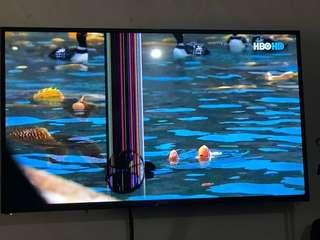 """Promac 55"""" TV (fixed price)"""