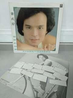 萧成宏 黑胶唱片 Vinyl Lp Record