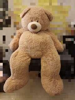 泰迪熊抱枕  大娃娃  全新