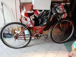 Bicycle THB Zephyr