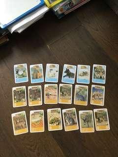 🚚 Animal ntuc cards