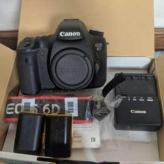 Canon 6D mk1 (body) with lowepro bag
