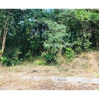 For Sale Regular lot in Eastland Heights Antipolo selling only at 7K per square meter