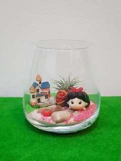Disney Princess Snow White & The Red Apple Air Plant Terrarium