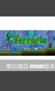 🚚 terraria 泰拉瑞亞 steam版本