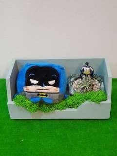 DC Batman Air Plant Terrarium Gift