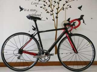 Pure/Link Greed Super Light Carbon Roadbike (size S)
