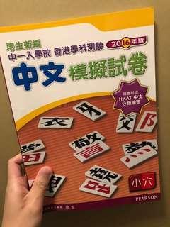 小四中文模擬試卷