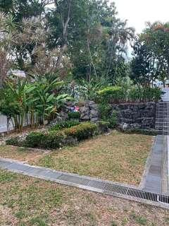 Freehold Corner Terrace @ Simpang Bedok