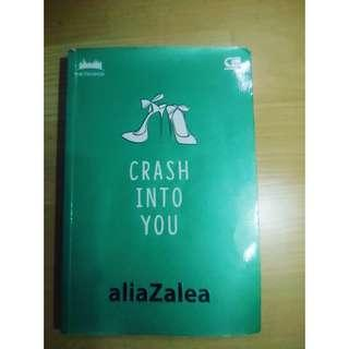 "Novel ""Crash Into You"""