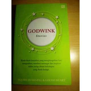 "Novel ""God's Wink"""
