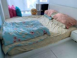 Mattress 床褥 (5尺)