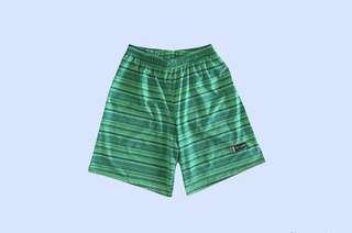 🚚 Boon Green Stripes Frisbee Shorts