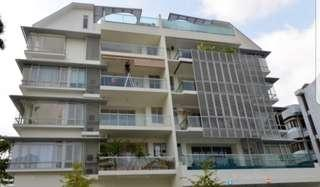 District 8 freehold condo for sales