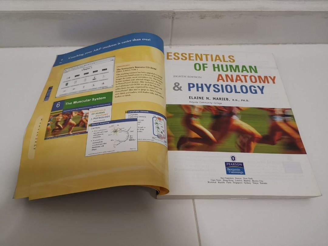 Essentials of Human Anatomy & Physiology, Books & Stationery