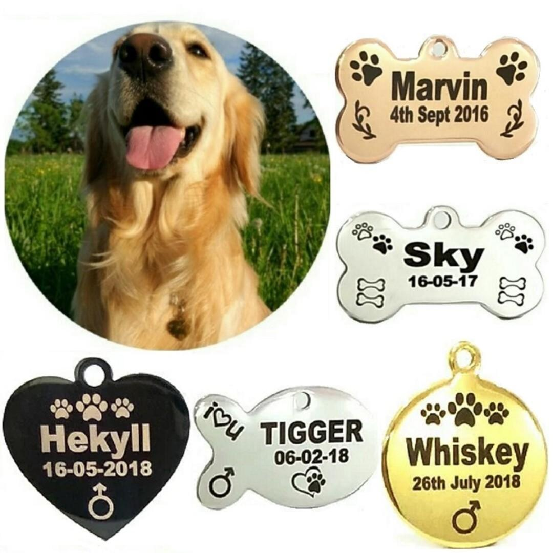 Laser Deep Engraving Customized Designer Pet ID Tag For Dogs & Cats