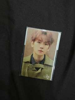 EXO BAEKHYUN CASH BEE UNIVERSE sealed