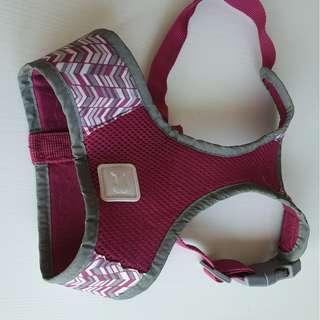 Dog body harness